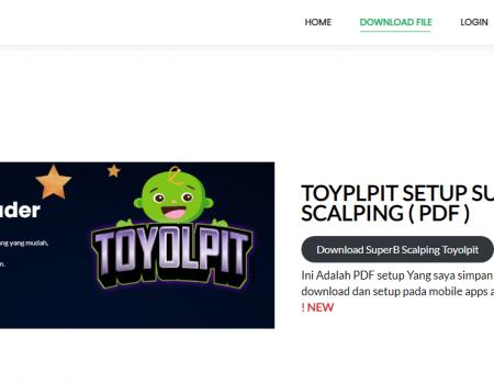https://www.toyolpit.com/wp-content/uploads/2021/08/toyolpit-450x350.png